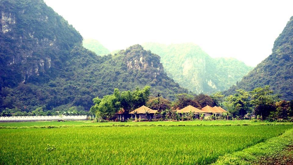 Cycling in Ancient Capital - Ninh Binh Tour