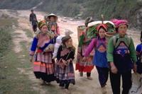 Explore The Hidden North Mountains in Viet Nam