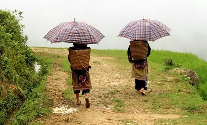 Viet Nam North West Adventure