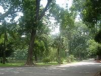 The Botanical Gardens (Vuon Bach Thao)