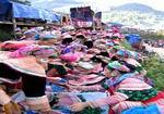 Binh Lu & Tam Duong Market